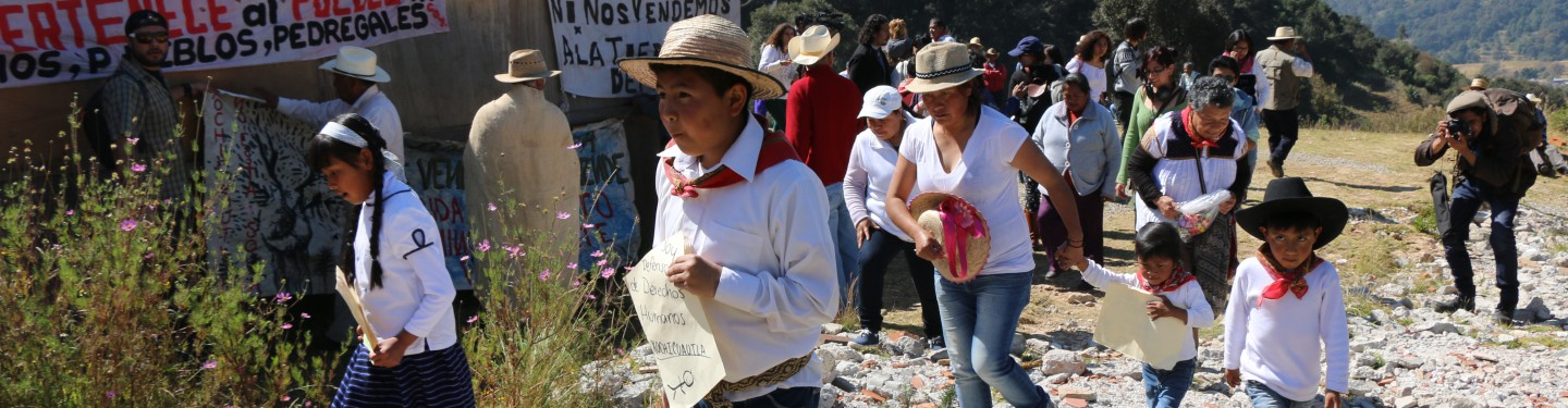 A Struggle for Land Rights in Mexico